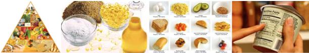 safefood informacic3b3n nutricional Etiquetas de Información Nutricional