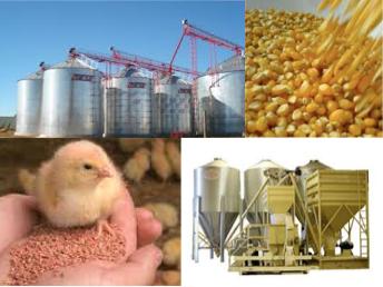 servicios balanceados Materias Primas y Alimentos para Animales